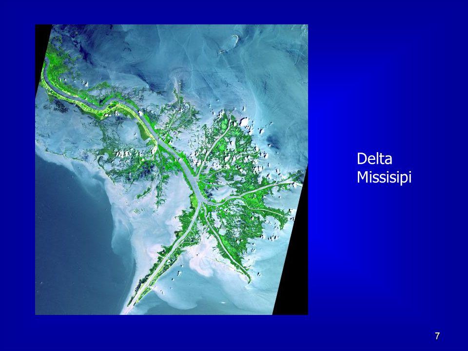 Delta Missisipi