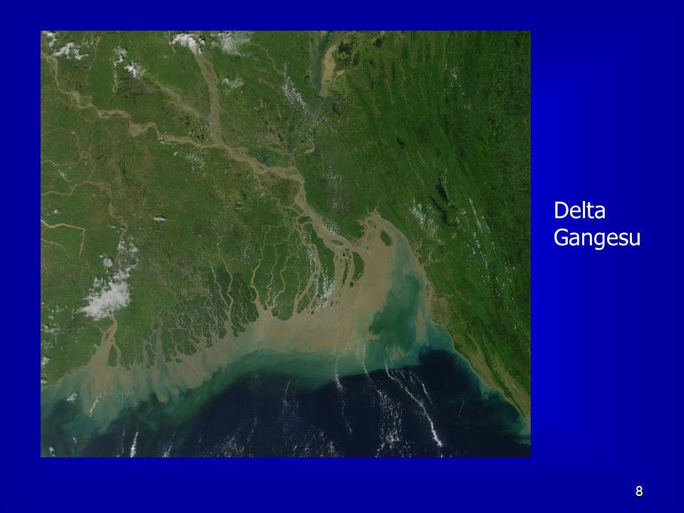 Delta Gangesu