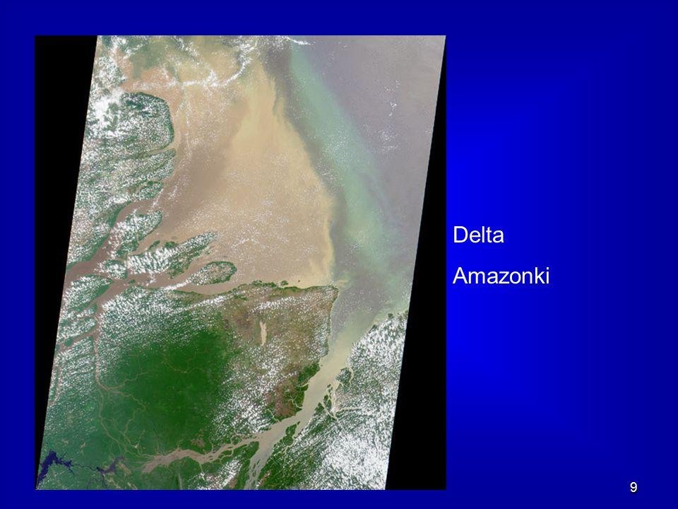 Delta Amazonki