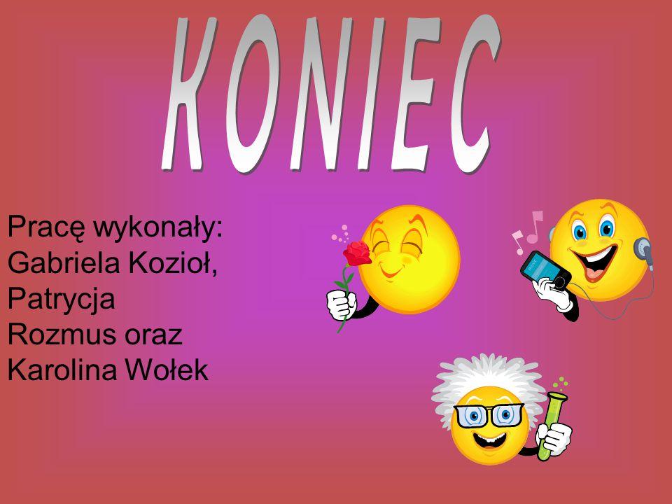 KONIEC Pracę wykonały: Gabriela Kozioł, Patrycja Rozmus oraz Karolina Wołek