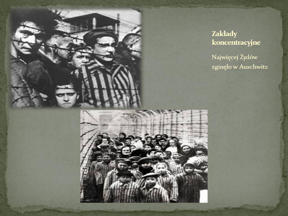 Zakłady koncentracyjne