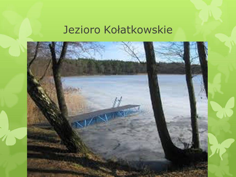 Jezioro Kołatkowskie