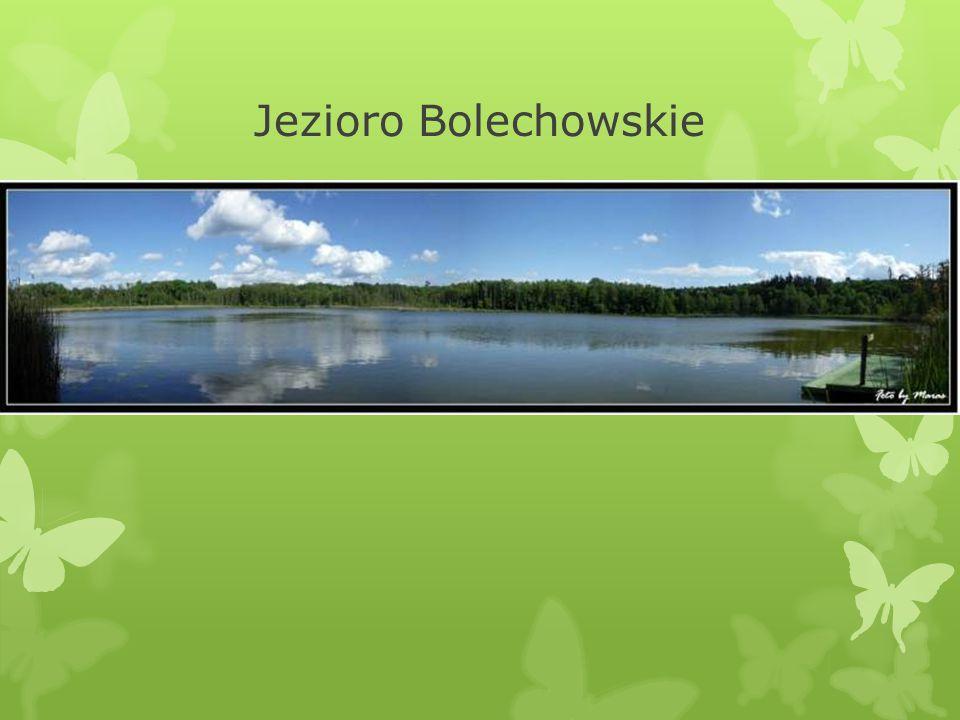 Jezioro Bolechowskie
