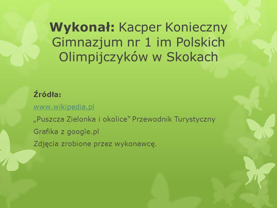 Wykonał: Kacper Konieczny Gimnazjum nr 1 im Polskich Olimpijczyków w Skokach