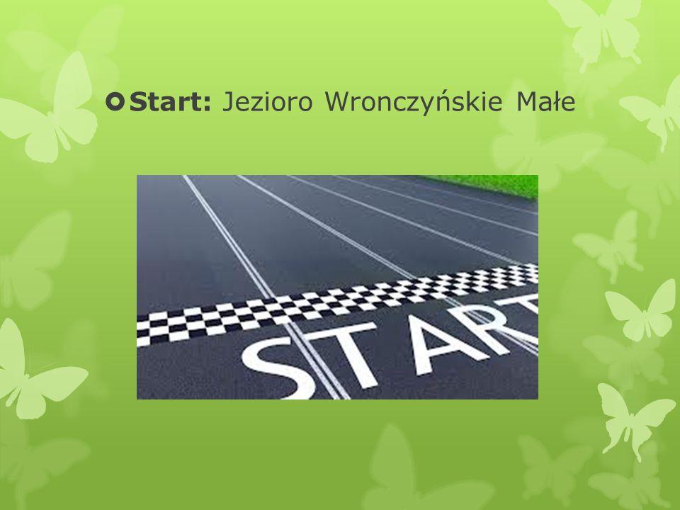 Start: Jezioro Wronczyńskie Małe