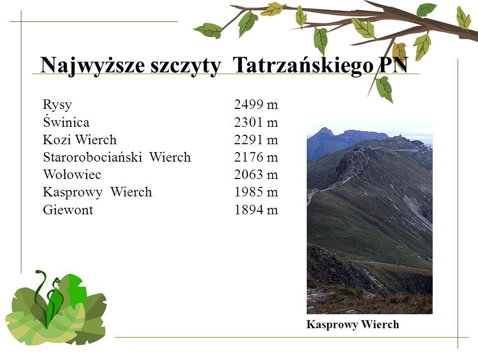 Najwyższe szczyty Tatrzańskiego PN