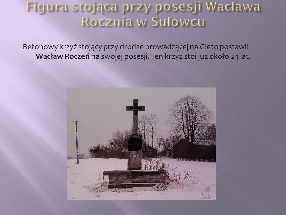 Figura stojąca przy posesji Wacława Rocznia w Sułowcu