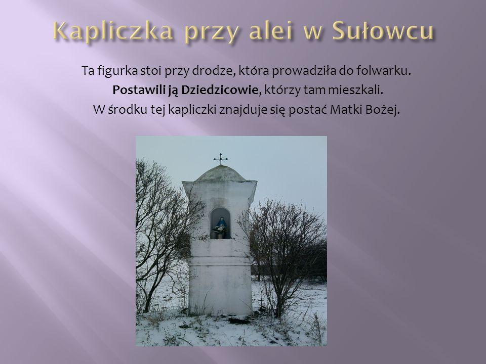 Kapliczka przy alei w Sułowcu
