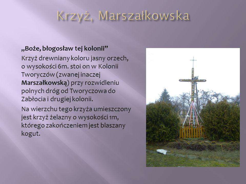 """Krzyż, Marszałkowska """"Boże, błogosław tej kolonii"""
