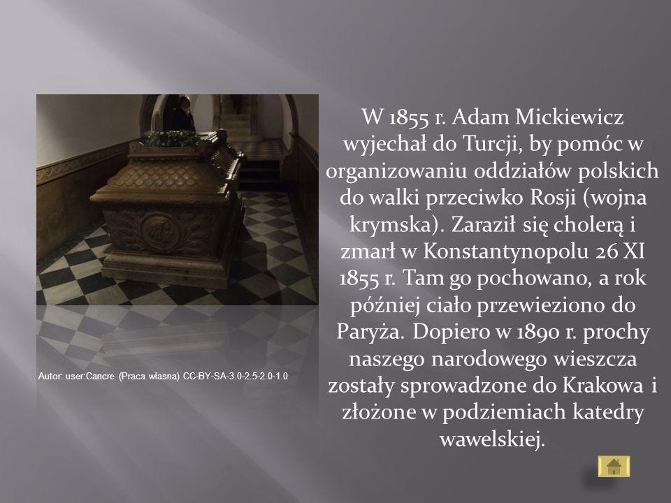 W 1855 r. Adam Mickiewicz wyjechał do Turcji, by pomóc w organizowaniu oddziałów polskich do walki przeciwko Rosji (wojna krymska). Zaraził się cholerą i zmarł w Konstantynopolu 26 XI 1855 r. Tam go pochowano, a rok później ciało przewieziono do Paryża. Dopiero w 1890 r. prochy naszego narodowego wieszcza zostały sprowadzone do Krakowa i złożone w podziemiach katedry wawelskiej.