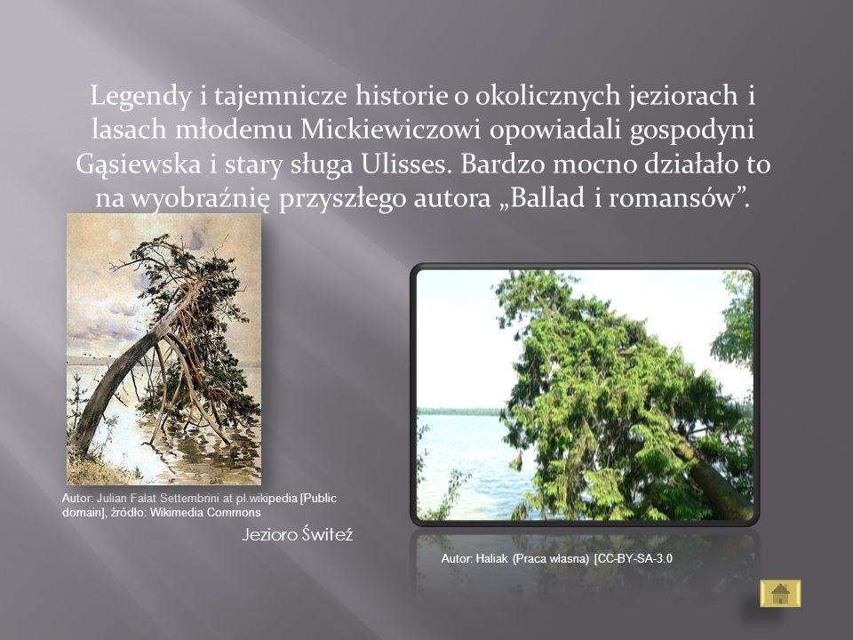 """Legendy i tajemnicze historie o okolicznych jeziorach i lasach młodemu Mickiewiczowi opowiadali gospodyni Gąsiewska i stary sługa Ulisses. Bardzo mocno działało to na wyobraźnię przyszłego autora """"Ballad i romansów ."""