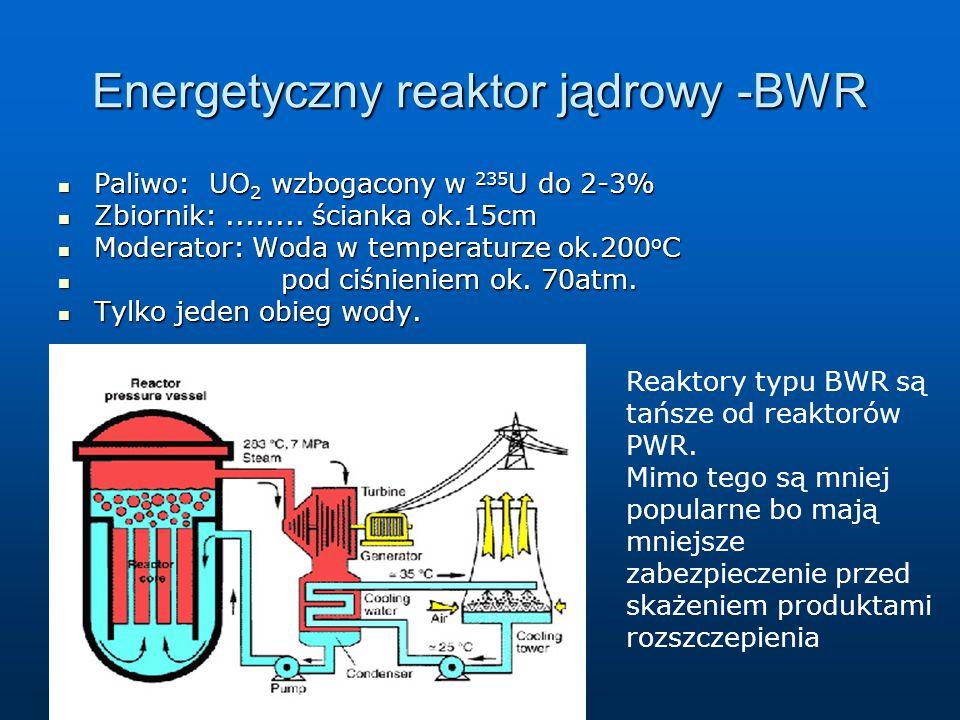 Energetyczny reaktor jądrowy -BWR
