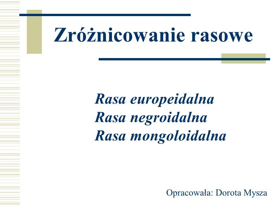 Zróżnicowanie rasowe Rasa europeidalna Rasa negroidalna