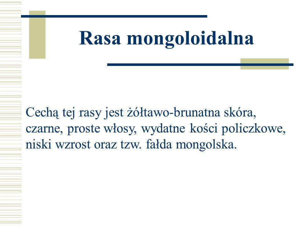 Rasa mongoloidalna Cechą tej rasy jest żółtawo-brunatna skóra,