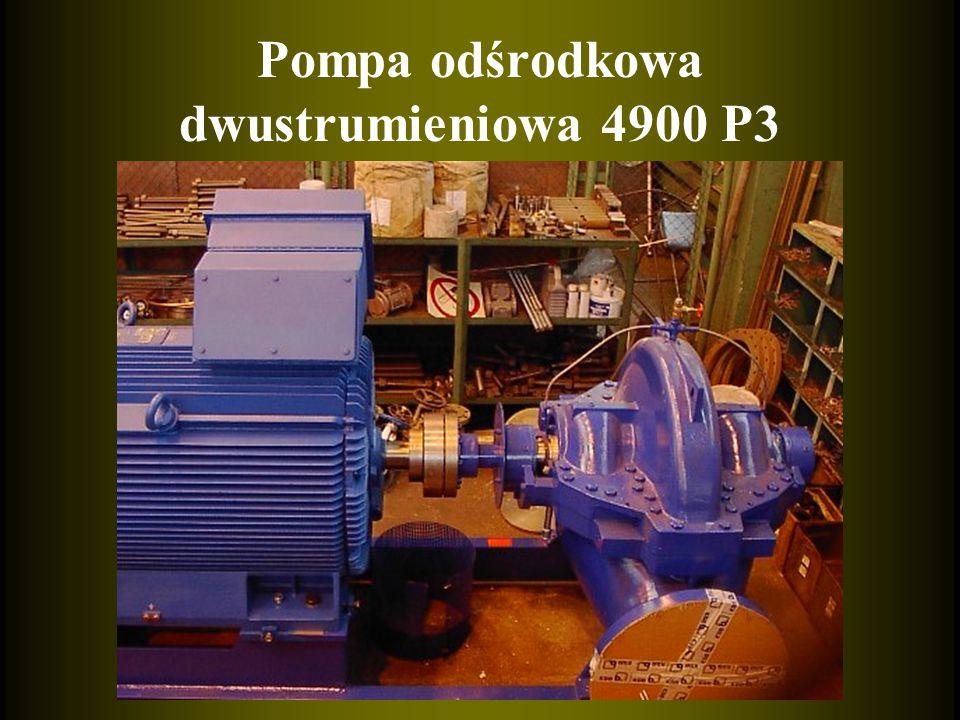 Pompa odśrodkowa dwustrumieniowa 4900 P3