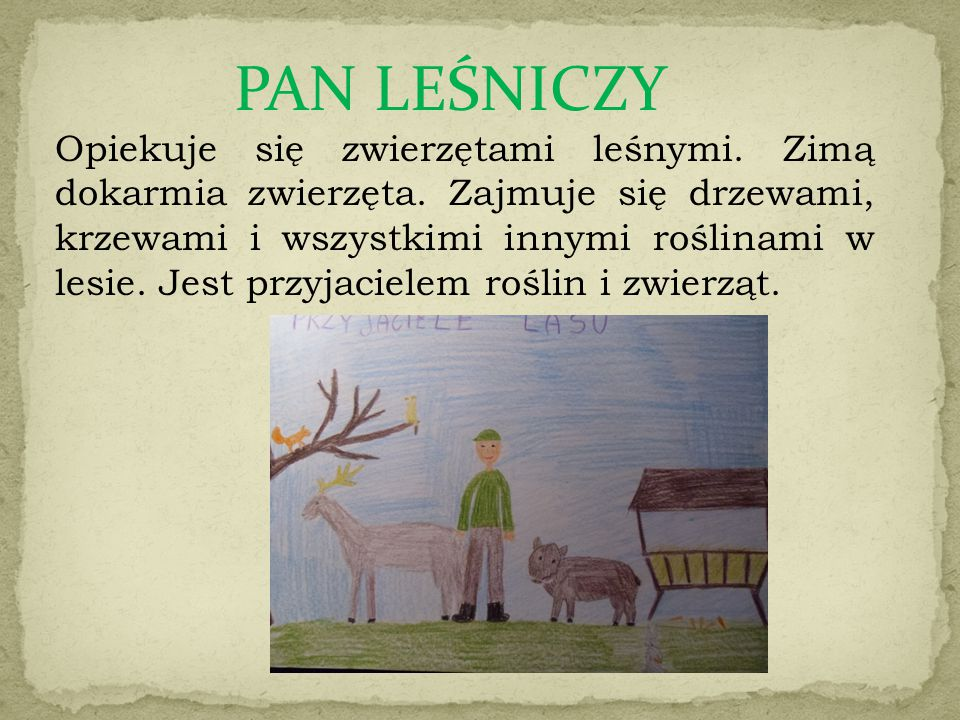 PAN LEŚNICZY