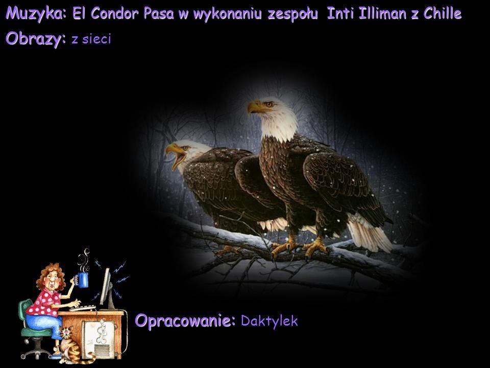 Muzyka: El Condor Pasa w wykonaniu zespołu Inti Illiman z Chille