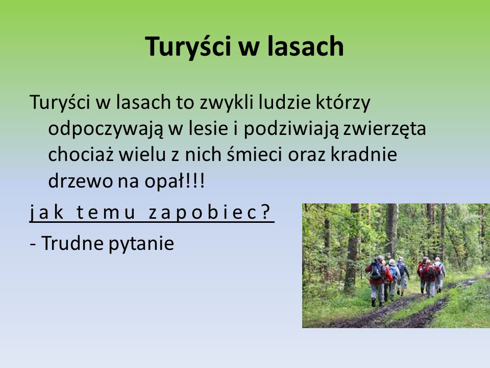 Turyści w lasach