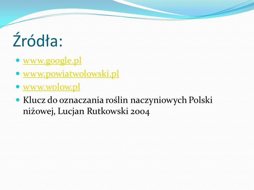 Źródła: www.google.pl www.powiatwolowski.pl www.wolow.pl