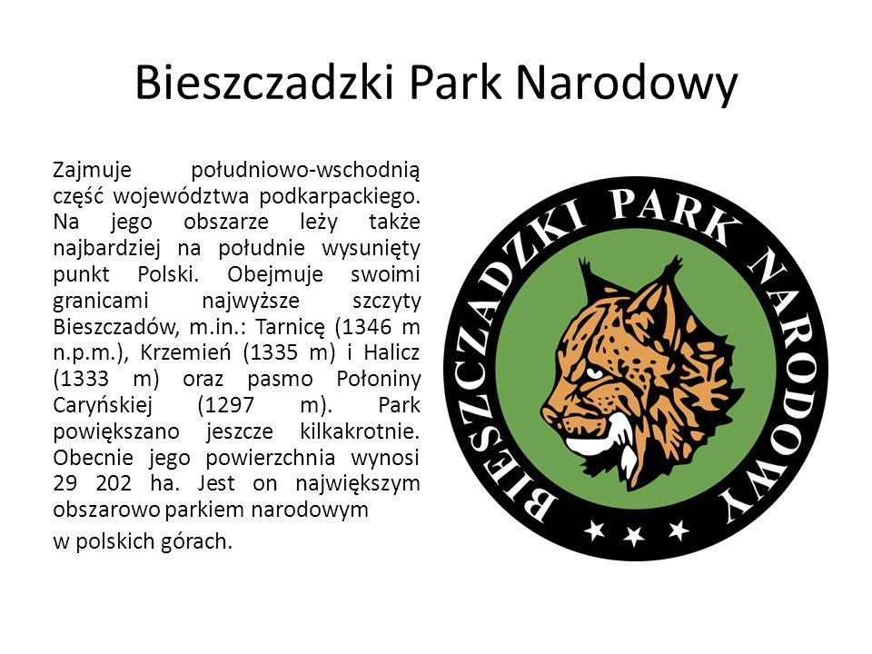Bieszczadzki Park Narodowy