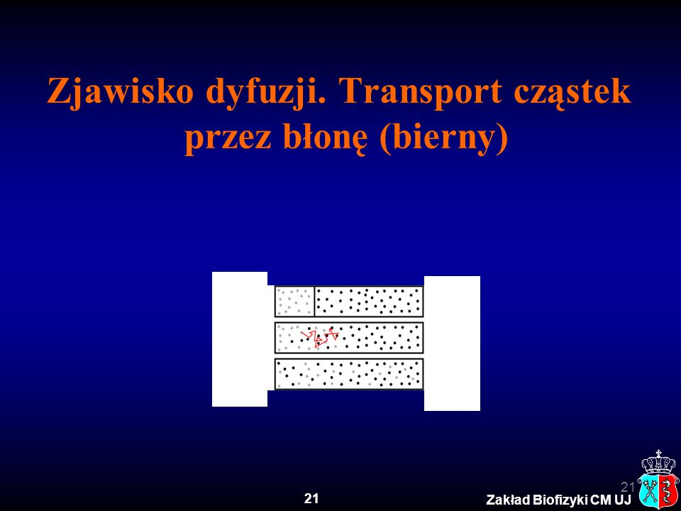 Zjawisko dyfuzji. Transport cząstek przez błonę (bierny)
