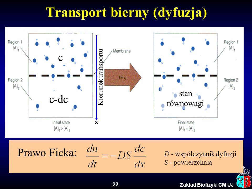 Transport bierny (dyfuzja)