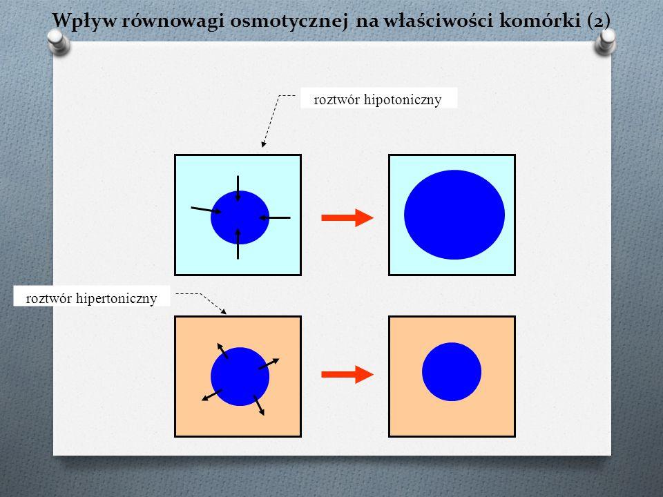 Wpływ równowagi osmotycznej na właściwości komórki (2)