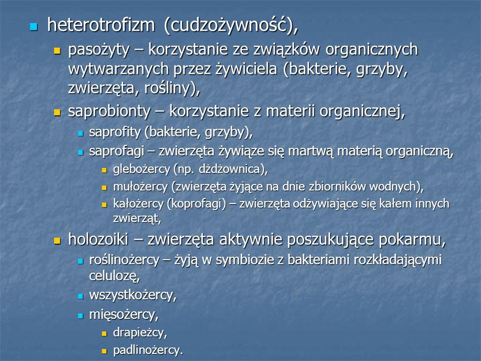heterotrofizm (cudzożywność),