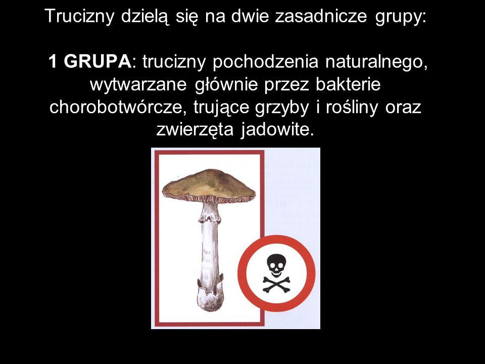 Trucizny dzielą się na dwie zasadnicze grupy: 1 GRUPA: trucizny pochodzenia naturalnego, wytwarzane głównie przez bakterie chorobotwórcze, trujące grzyby i rośliny oraz zwierzęta jadowite.