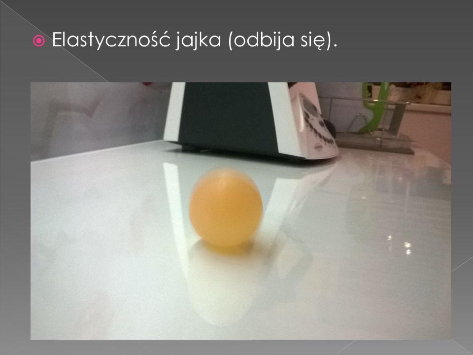 Elastyczność jajka (odbija się).