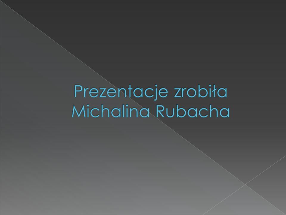 Prezentacje zrobiła Michalina Rubacha