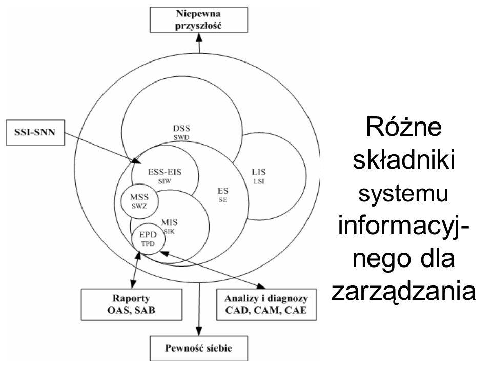 Różne składniki systemu informacyj-nego dla zarządzania