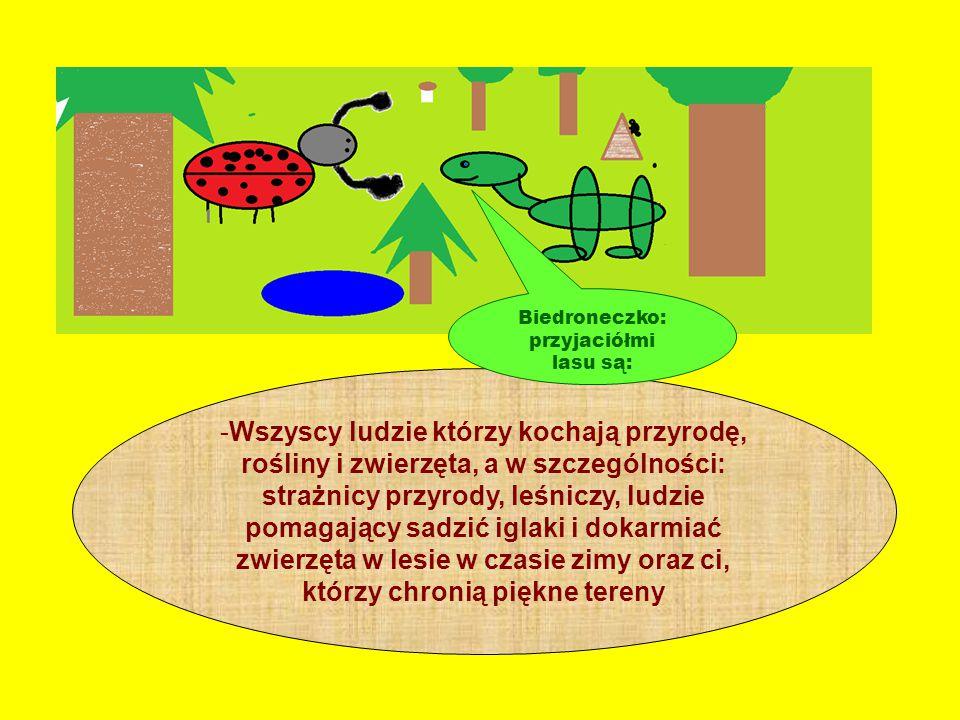 Biedroneczko: przyjaciółmi lasu są: