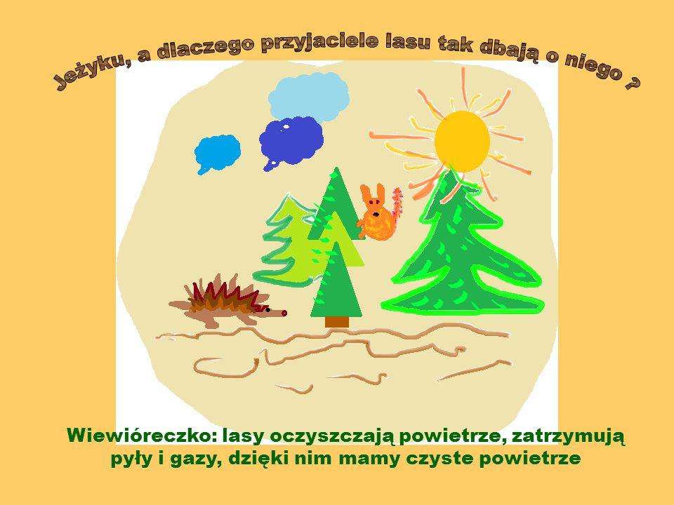 Jeżyku, a dlaczego przyjaciele lasu tak dbają o niego