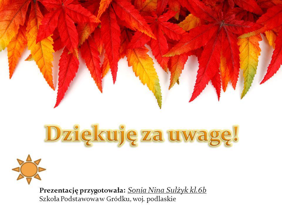 Dziękuję za uwagę! Prezentację przygotowała: Sonia Nina Sulżyk kl.6b