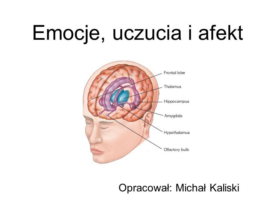 Opracował: Michał Kaliski