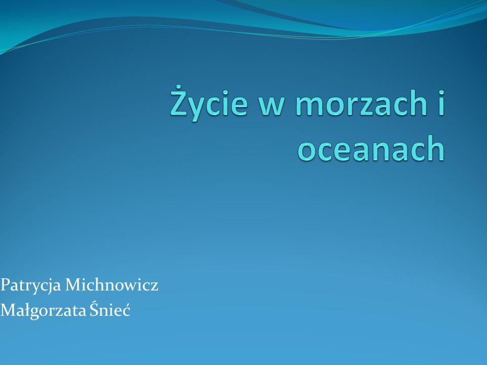 Życie w morzach i oceanach