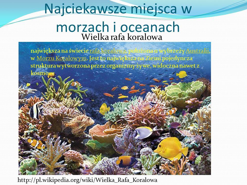 Najciekawsze miejsca w morzach i oceanach
