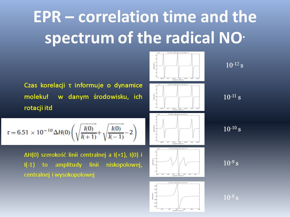 EPR – correlation time and the spectrum of the radical NO.