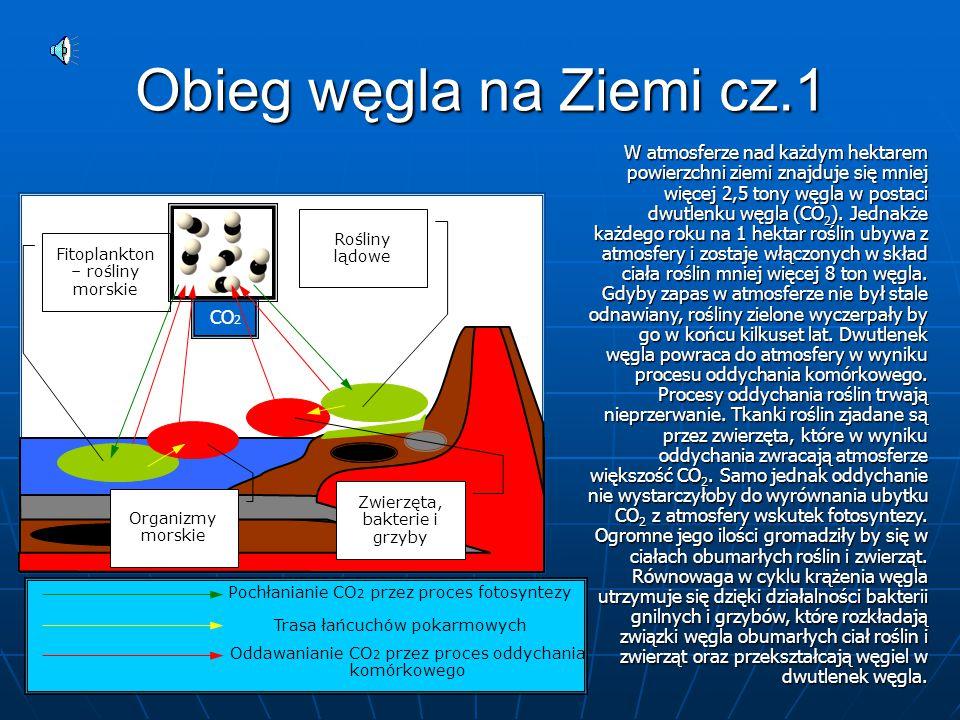 Obieg węgla na Ziemi cz.1