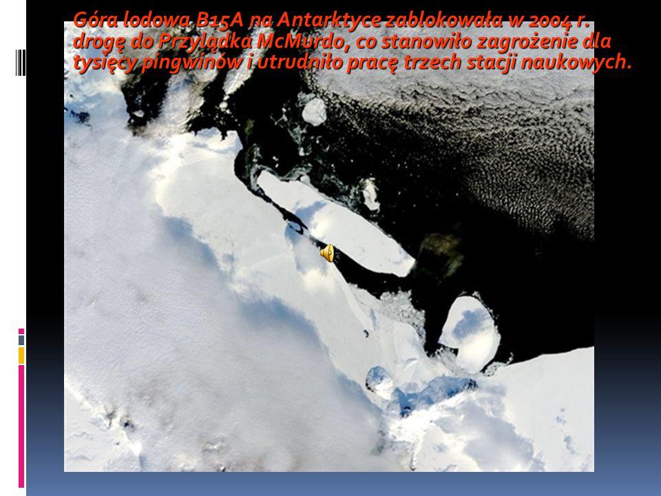 Góra lodowa B15A na Antarktyce zablokowała w 2004 r