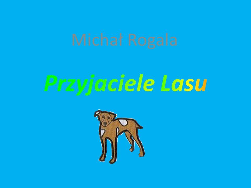 Michał Rogala Przyjaciele Lasu
