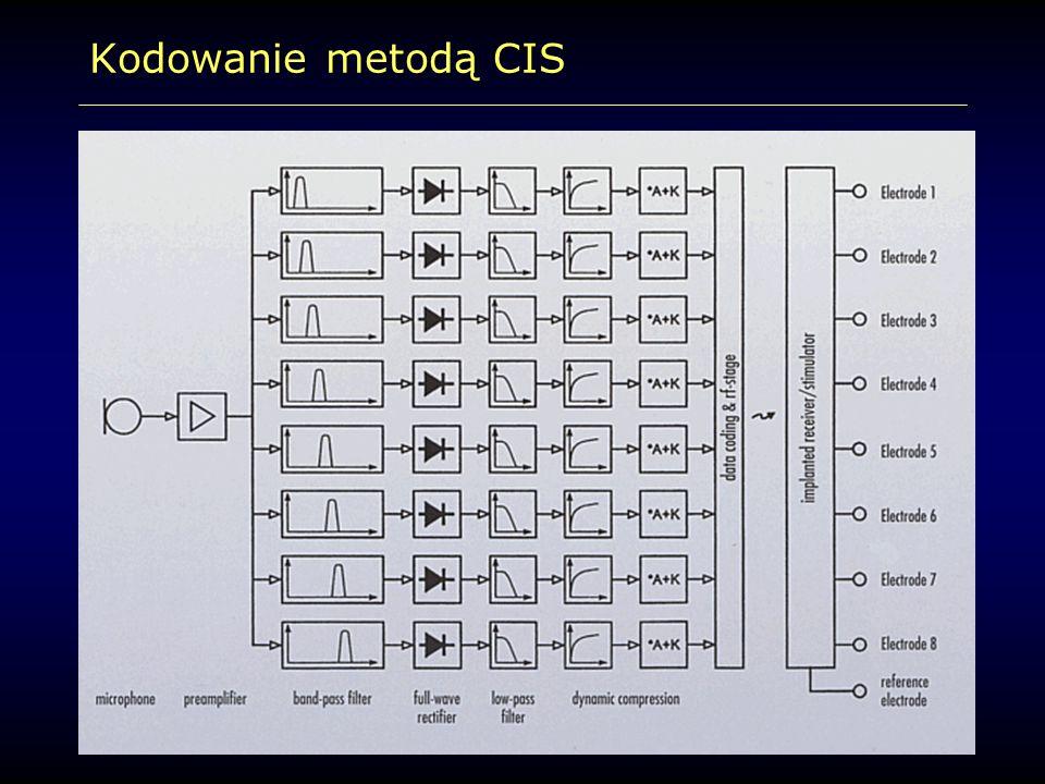 Kodowanie metodą CIS
