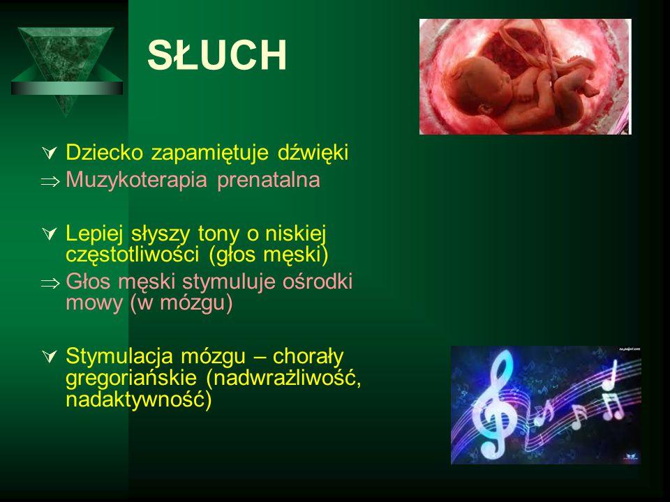 SŁUCH Dziecko zapamiętuje dźwięki Muzykoterapia prenatalna