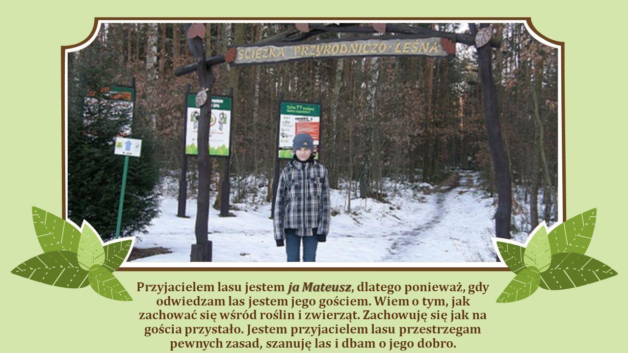 Przyjacielem lasu jestem ja Mateusz, dlatego ponieważ, gdy odwiedzam las jestem jego gościem.