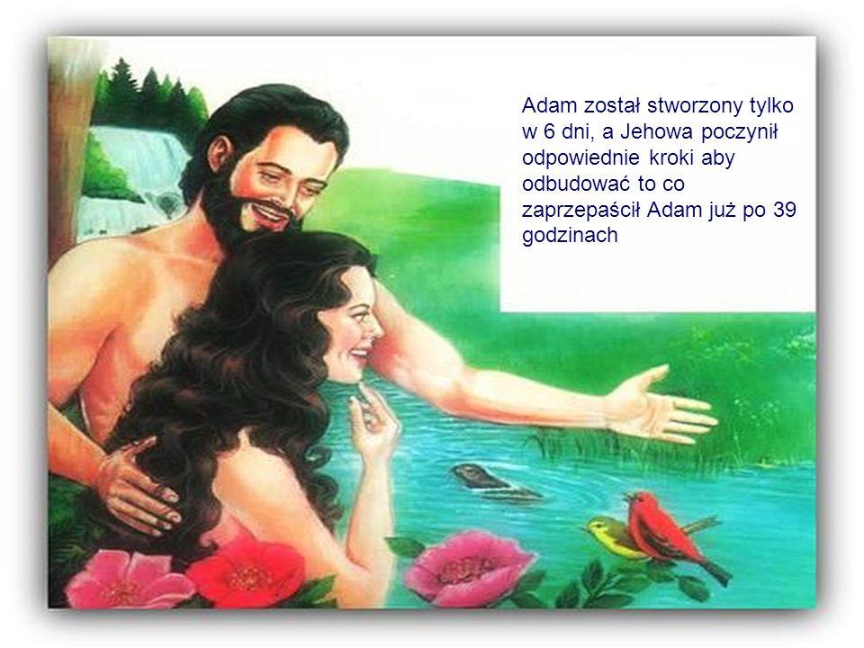 Adam został stworzony tylko w 6 dni, a Jehowa poczynił odpowiednie kroki aby odbudować to co zaprzepaścił Adam już po 39 godzinach