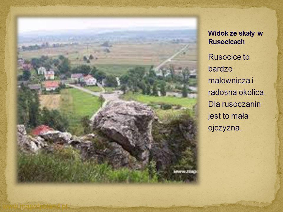 Widok ze skały w Rusocicach
