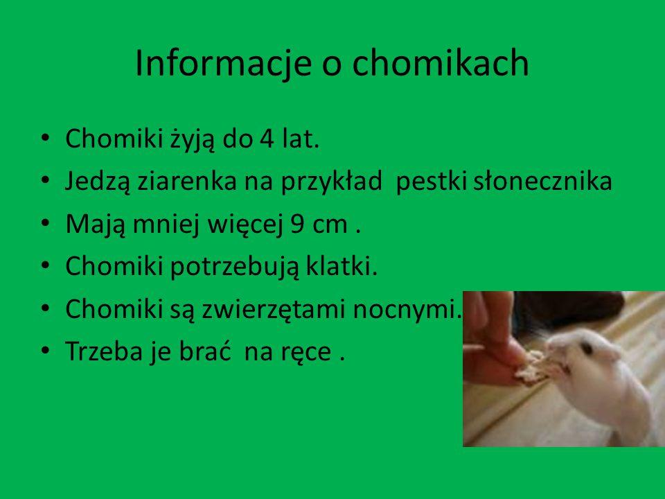 Informacje o chomikach
