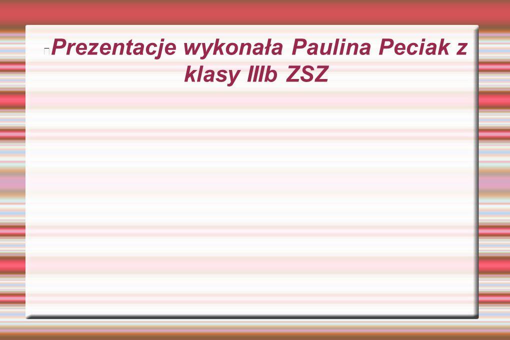 Prezentacje wykonała Paulina Peciak z klasy IIIb ZSZ