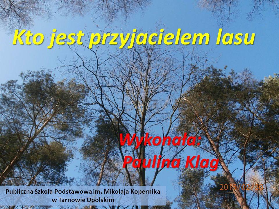 Publiczna Szkoła Podstawowa im. Mikołaja Kopernika w Tarnowie Opolskim